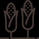 Doractwo żywieniowe